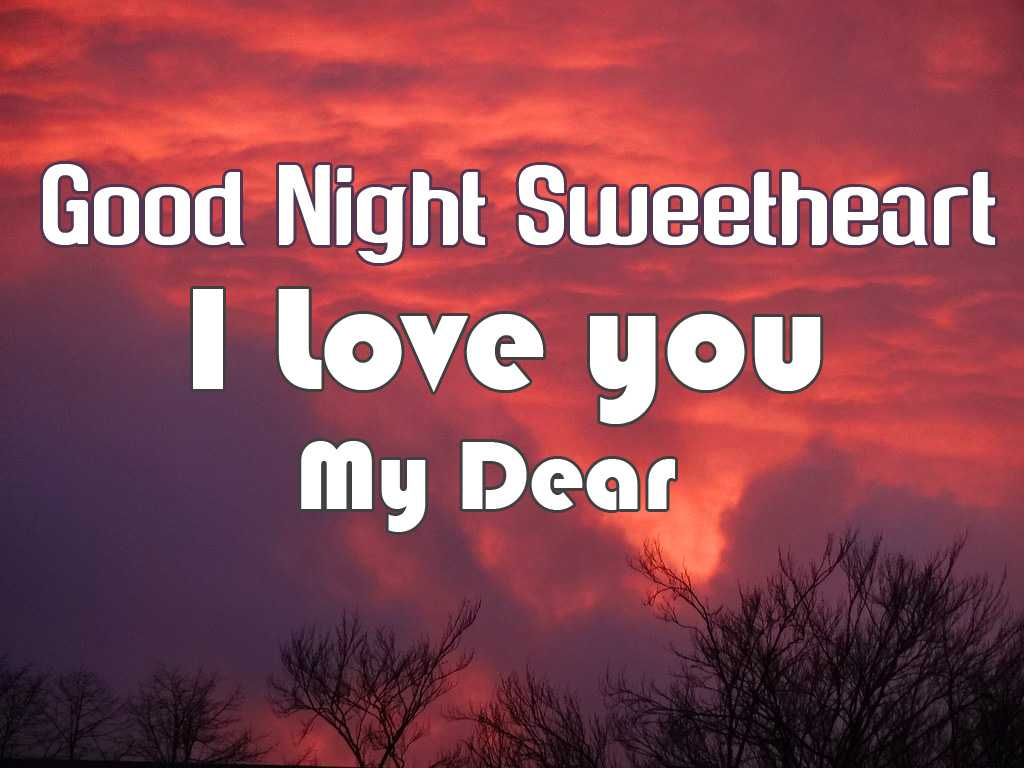 Good Night Romantic Special Whatsapp Status Download